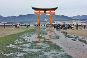 torii-flottant-japon