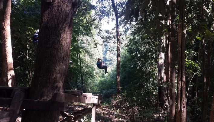 La Gibbon experience, ou ma vie de guenon dans la jungle